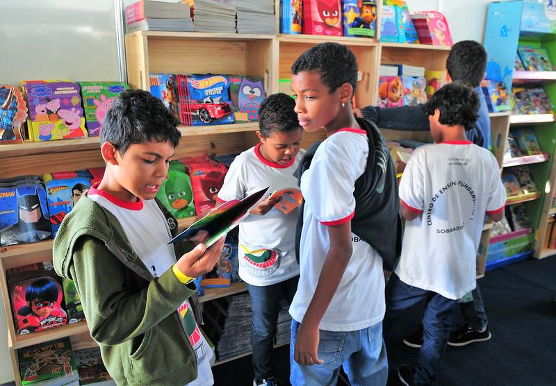 Regionais de Ensino, por meio de seus núcleos pedagógicos, deverão convocar os professores para formularem o Projeto, definindo ações pedagógicas e o levantamento bibliográfico
